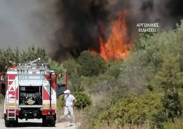 Αργολίδα: Σε εξελιξη η πυρκαγιά στην Ερμιονίδα - Ζημιές από την φωτιά σε δύο κατοικίες