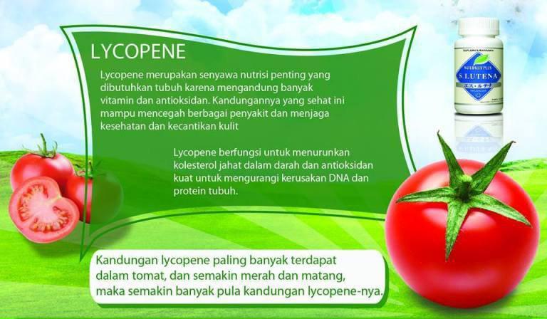 Kandungan Likopen (Lycopene) dalam S Lutena