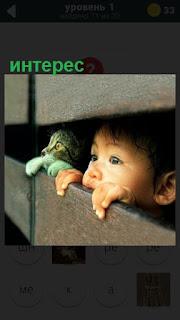 275 слов мальчик и кошка смотрят с интересом через забор 1 уровень