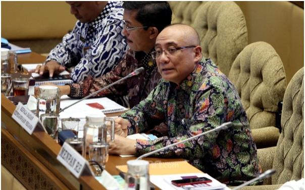 Kepala BKN Menjelaskan Kendala Pengangkatan PPPK, Simak Baik-baik