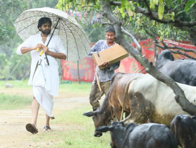 pawan-kalyan-farm-house
