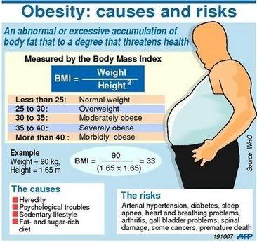 Kalau Ingin Langsing Bebas Obesitas, Perut Harus Tetap Kenyang
