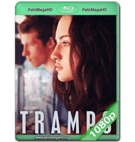 TRAMPS (2016) WEB-DL 1080P HD MKV ESPAÑOL LATINO