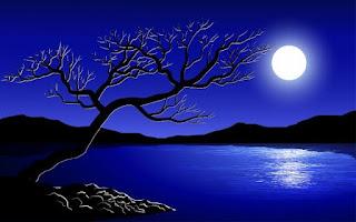 The sea,moon, stars and tree, a poem by Damilola