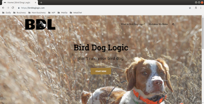 Bird Dog Logic home page