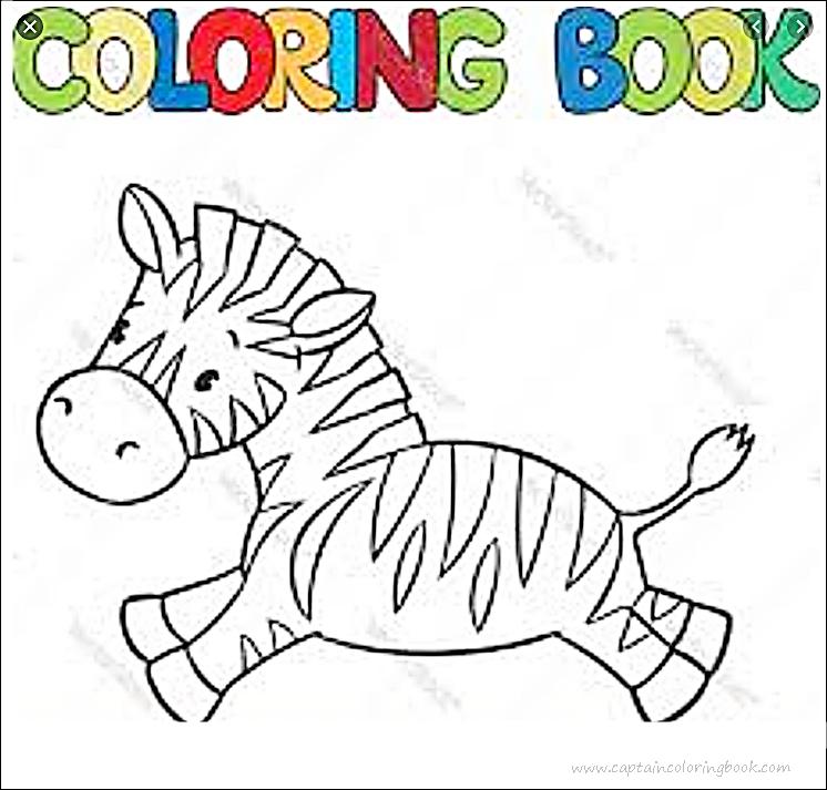 zebra coloring pages – littapes.com   713x746