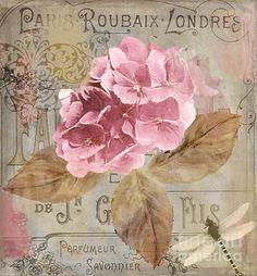 Imprimolandia L Minas Con Rosas