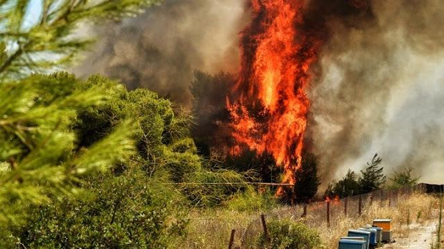 Υψηλός ο κίνδυνος πυρκαγιάς στην Αργολίδα  και το Σάββατο 1 Αυγούστου