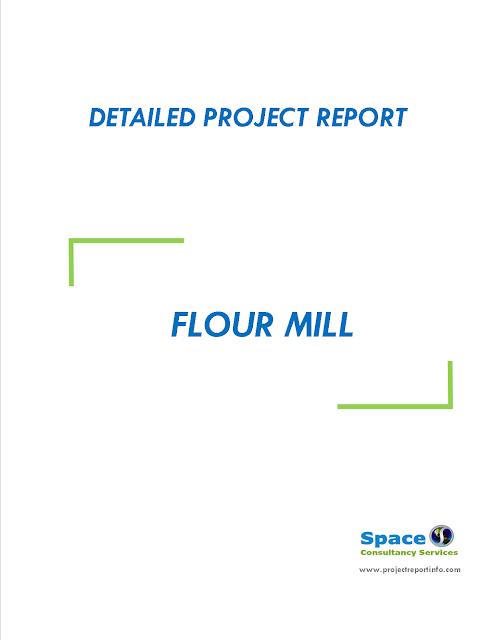 Project Report on Flour Mill