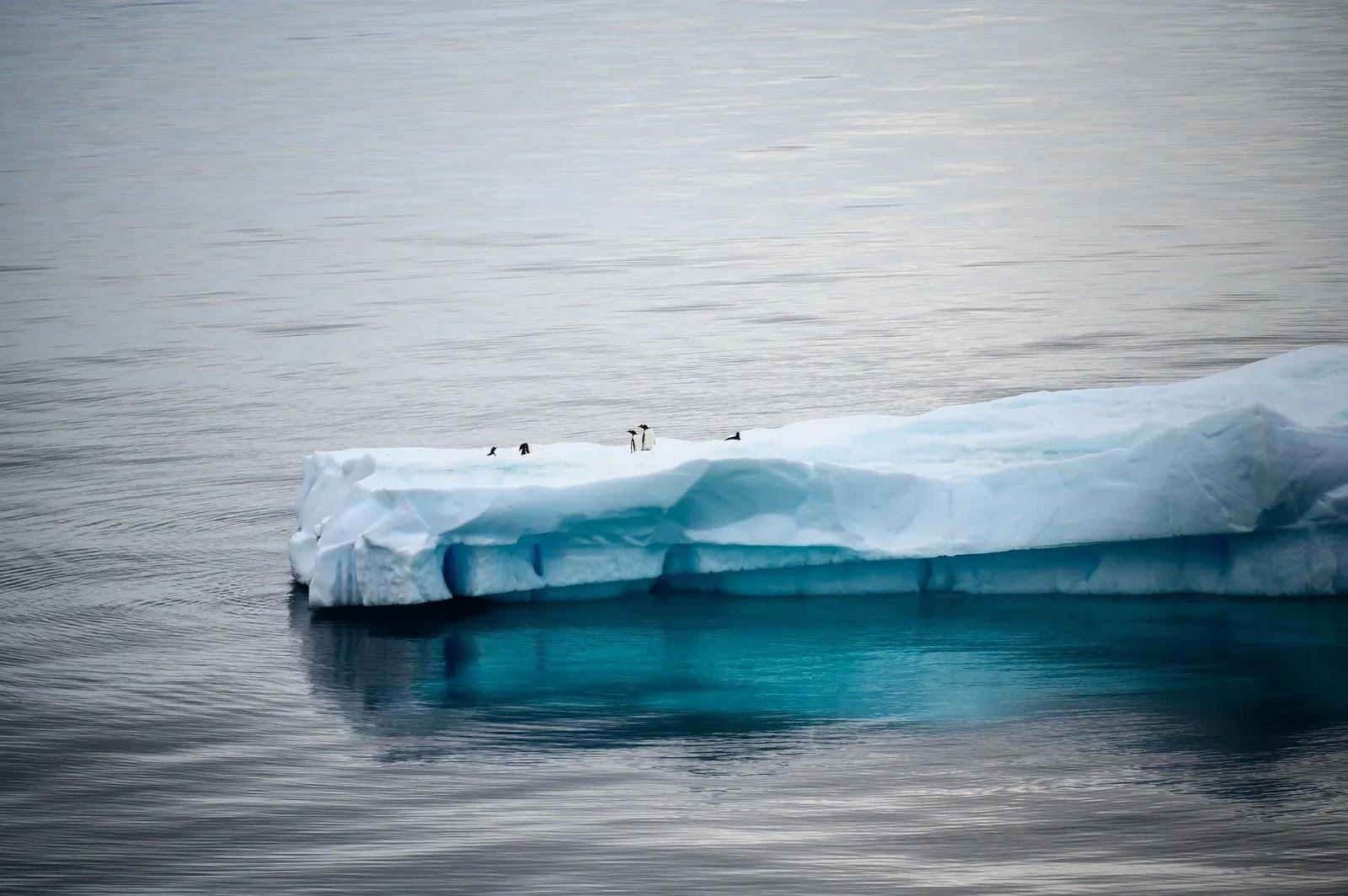 صور جميلة وخلفيات للجبال الجليدية