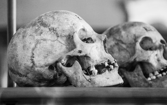skulls, magick