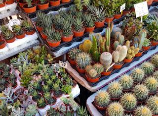 Mercado de flores Niza.