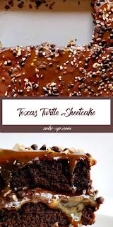 Texas Turtle Sheetcake