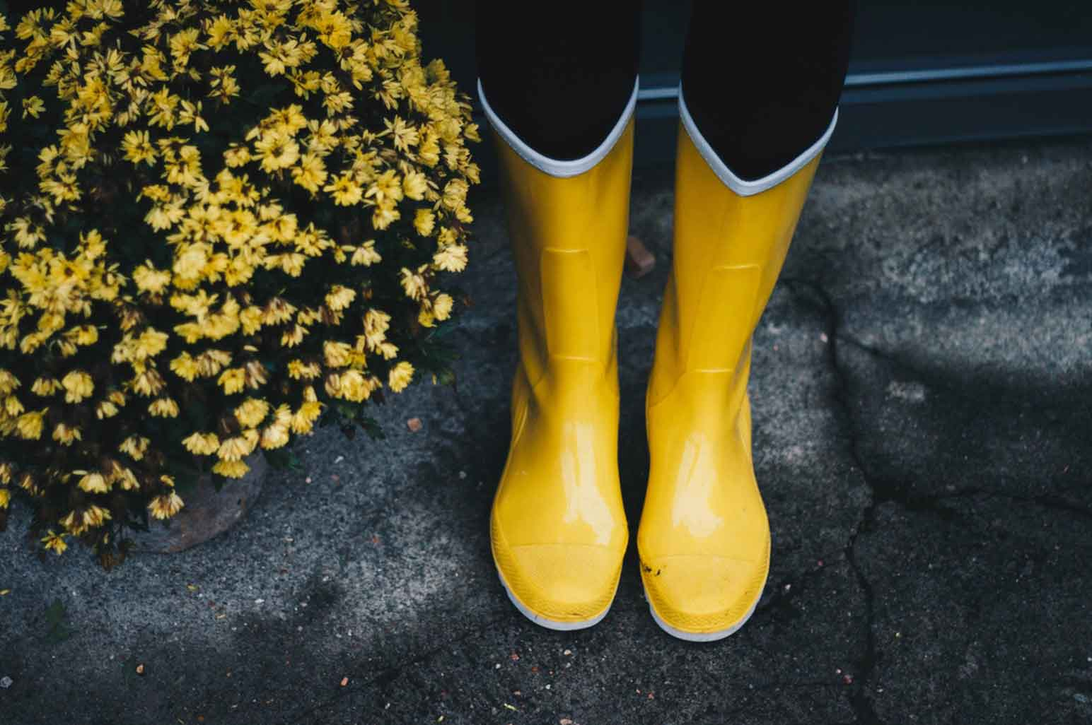 Things to Look for When Buying a Pair of Rain Boots