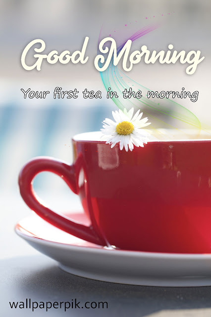Cute Good Morning Messages For Her Girlfriend Or Wife