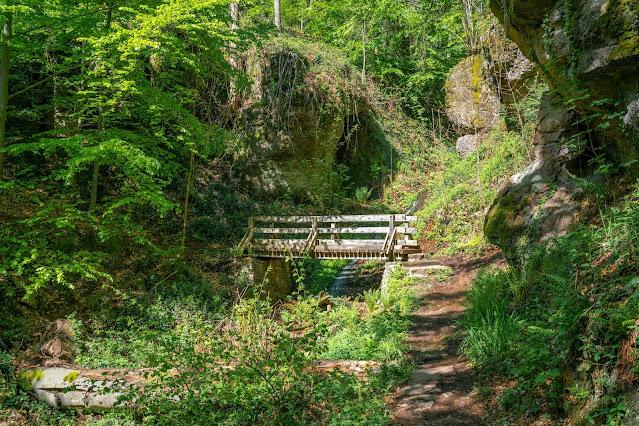 Premiumwanderweg Murgleiter | Etappe 1 von Gaggenau nach Gernsbach | Wandern nördlicher Schwarzwald 19
