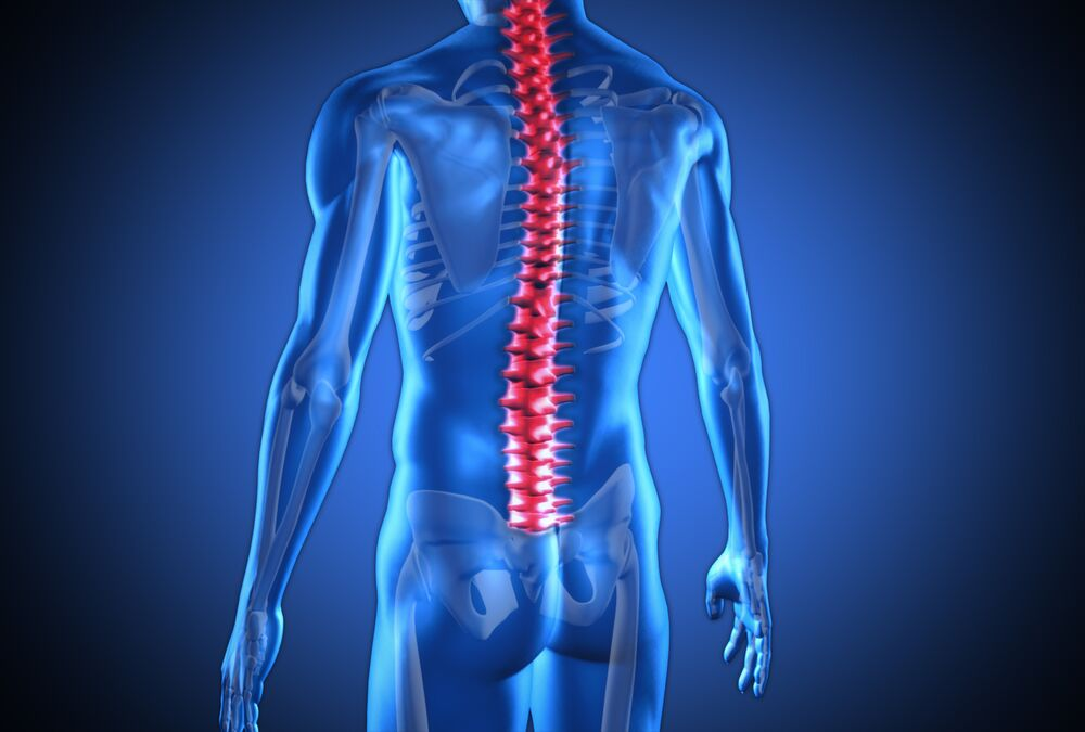 Proven Benefits of Chiropractic Care_preview