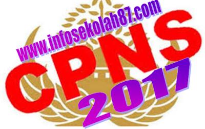 Pendaftaran CPNS Tahun 2017 Di 30 Kementerian Dan 30 Lembaga