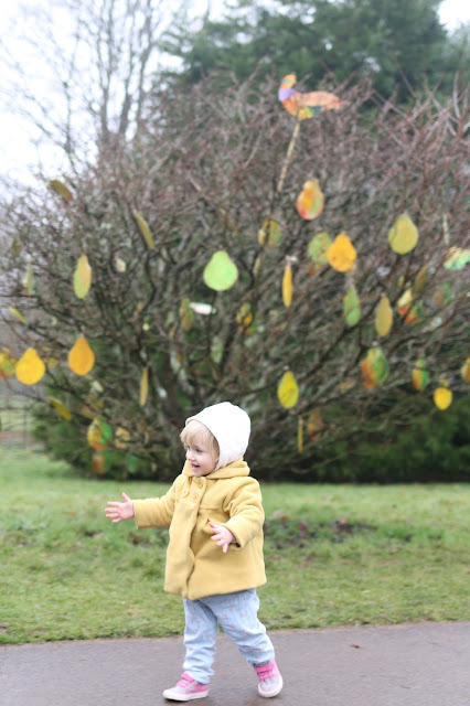 a partridge in a pear tree - 12 days of christmas trail at dyffryn gardens