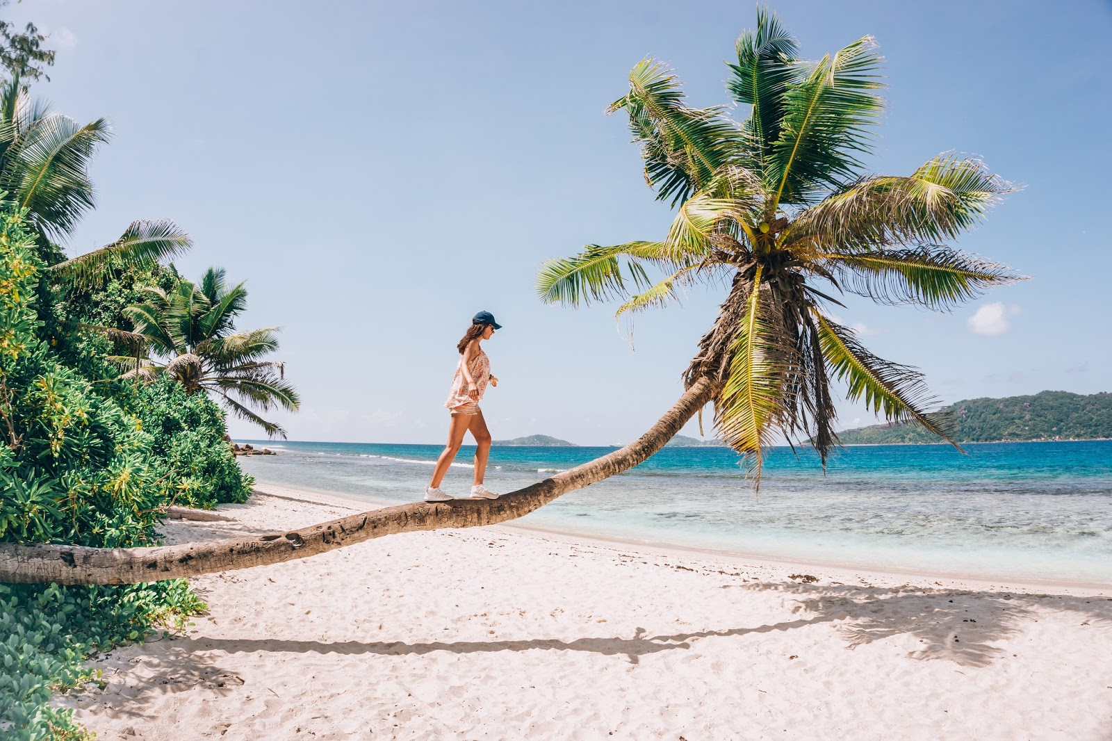 Seszele, rajskie Seszele, podróż na Seszele, Seszele palmy, Seszele plaże, Seszele na własną rękę, Seszele budżetowo, jak zorganizować wyjazd na Seszele, ile kosztuje wyjazd na Seszele, ile kosztują Seszele, blog podróżniczy, polski blog podróżniczy, blog lifestyle, thedailywonders, Polka podróżniczka