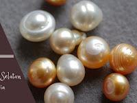 Menyingkap dan Mendalami Indonesian South Sea Pearls (ISSP)