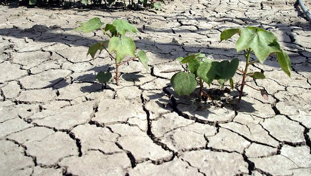 ΟΗΕ: Η ξηρασία κινδυνεύει να γίνει η επόμενη πανδημία
