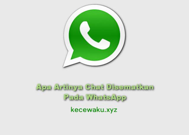 Apa Artinya Chat Disematkan