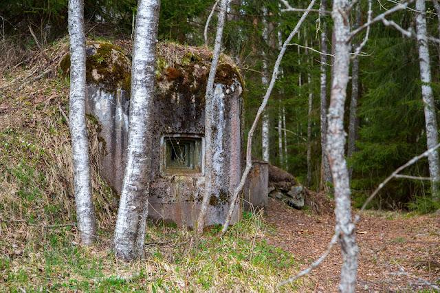 Rundweg im Säumermoor - Soumarské rašeliniště | Wandern im tschechischen Böhmerwald | Nationalpark Sumava | Soumarský Most | Wandern Šumava 09