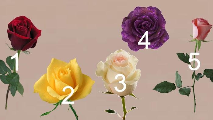 Понравившаяся роза поведает, когда исполнится ваше заветное желание