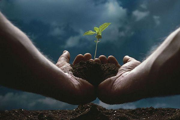 Jenis dan Manfaat Sumber Daya Alam