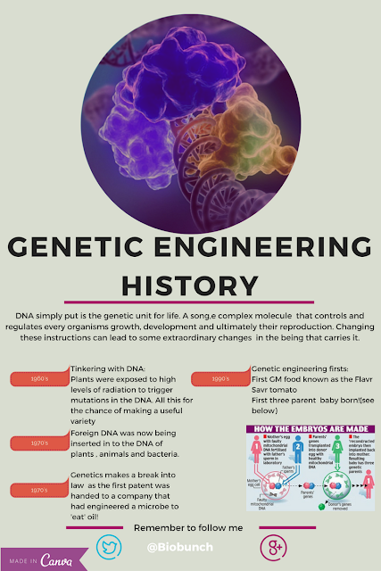 genetic engineering history and future altering the face of science Genetic engineering and gene editing have the potential to radically transform our lives if they can science of the future genetic literacy project.