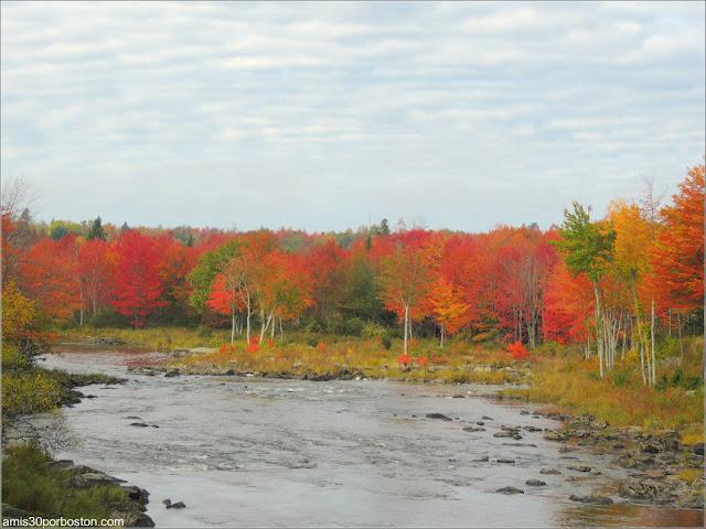 Paisaje de Maine durante el Puente de Columbus Day
