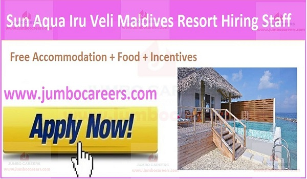 Maldive jobs with food and accommodation,