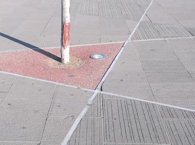 Fotó novellához, Széll Kálmán (régebben: Moszkva) tér nyáron, a napsütötte téren pusztuló, leburkolt gyökerű fa törzse árnyékot vet a térkőre.