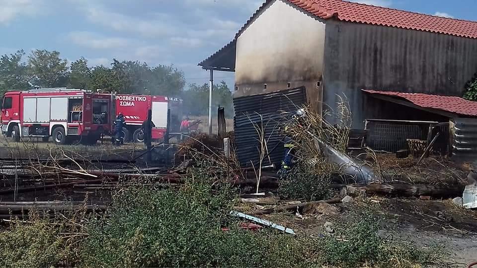 Ξάνθη: Φωτιά σε αγρόκτημα δίπλα σε κτηνοτροφική μονάδα στον Πολύσιτο - ΦΩΤΟ