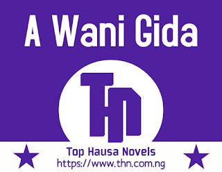 A Wani Gida
