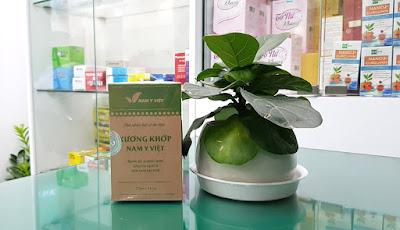 Xương Khớp Nam Y Việt, hỗ trợ giảm triệu chứng đau mỏi do viêm khớp, thoái hóa khớp