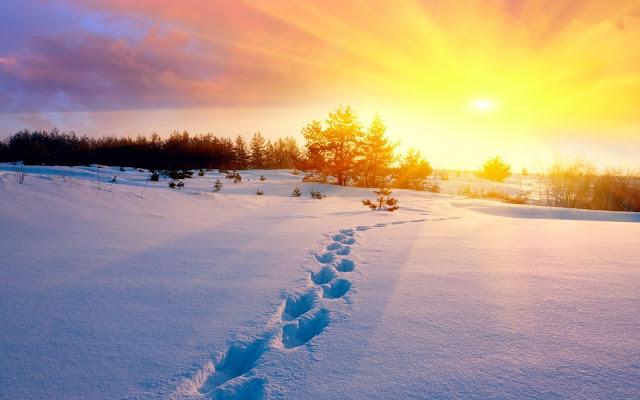 Dengan Bismillah, Membersamakan Allah pada Segala Kebaikan (Tafsir Al-Mishbah)