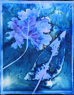 Wet cyanotype_Sue Reno_Image 413