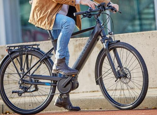 Gazelle Medeo e bike