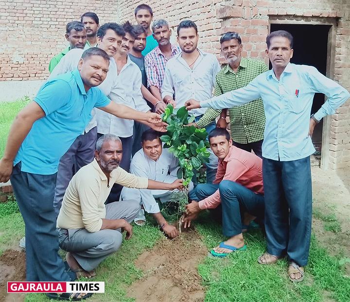 प्रदेश पौधरोपण महाकुम्भ के अवसर पर विद्यालय में पौधे लगाए गए