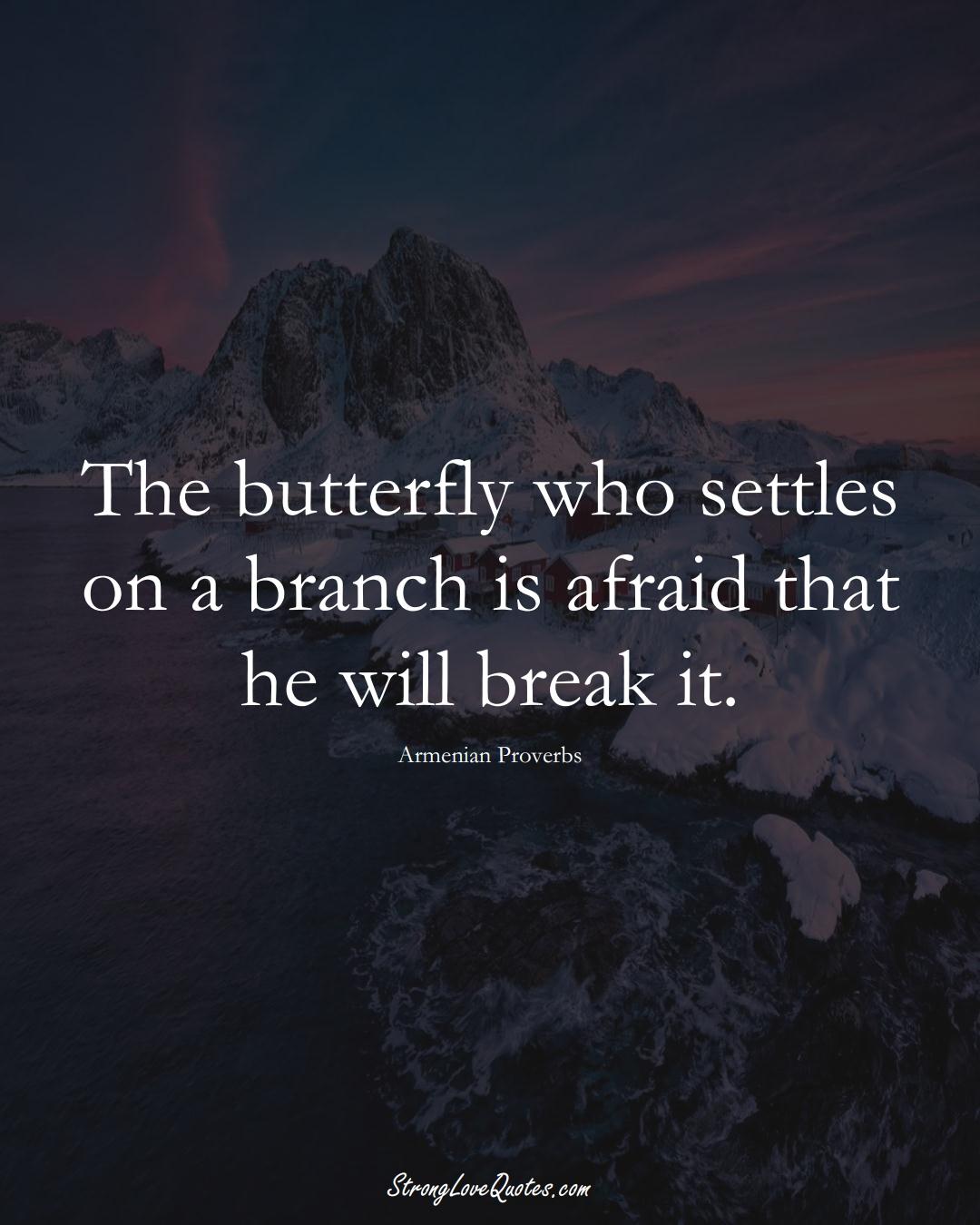 The butterfly who settles on a branch is afraid that he will break it. (Armenian Sayings);  #AsianSayings