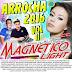 CD MAGNÉTICO LIGHT ARROCHA 2016 VOL 11 - (DJ SIDNEY FERREIRA E PEDRINHO VIRTUAL)