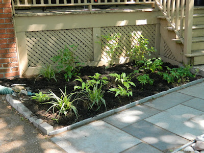 by Paul Jung Gardening Services--a Toronto Gardening Company Mount Pleasant East Davisville New Front Shade Garden After