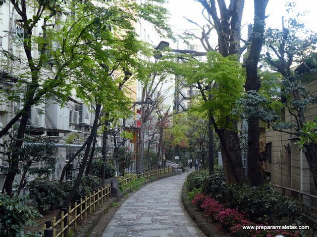 ruta por shinjuku en tokio