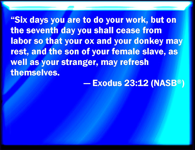 Six days do your work, but on the seventh day do not work, so that your ox and your donkey may rest and the slave born in your household, and the alien as well, may be refreshed.