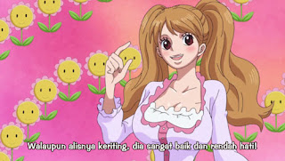 Download One Piece Episode 787 Subtitle Indonesia