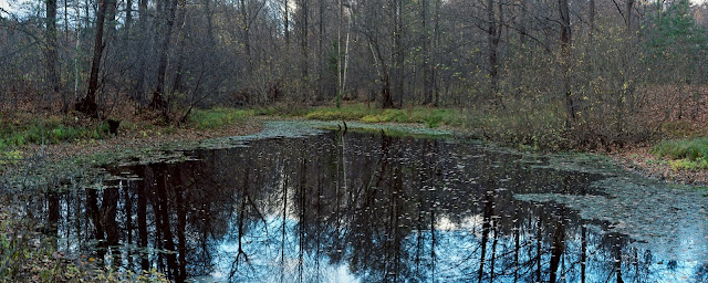 Пруд в октябре. Река Линда.