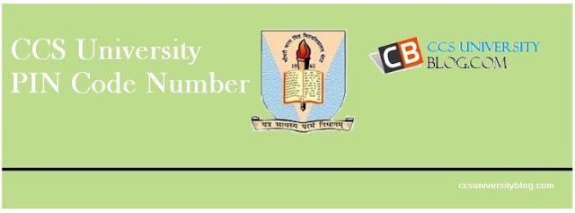 CCS University Meerut PIN Code