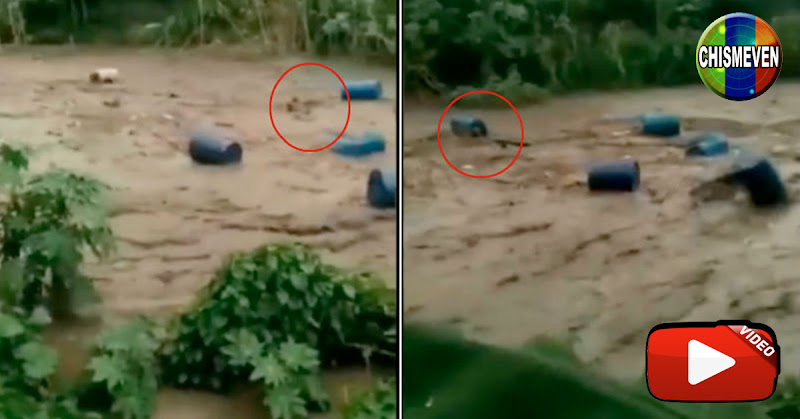 MILAGRO | Hombre arrastrado pro el río El Limón fue encontrado con vida